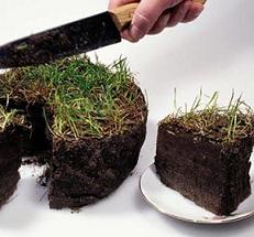Земельный налог ИП