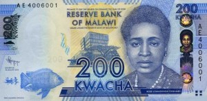 Малавийская квача 200а