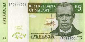 Малавийская квача 5а