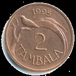 Малавийская тамбала 2а