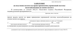 Образец заявления на патент ИП