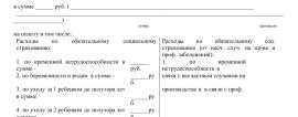 Образец заявления о возмещении расходов ФСС_001