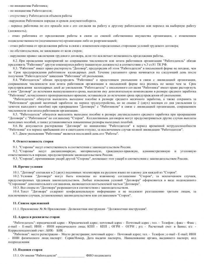 Образец трудового договора с веб-программистом_003