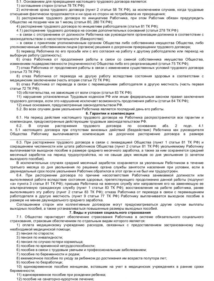 Образец трудового договора с директором по развитию_004