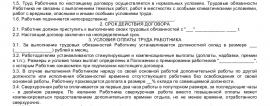 Образец трудового договора с начальником отдела продаж_001