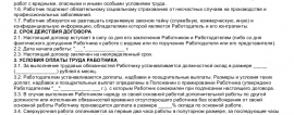 Образец трудового договора с ревизором_001