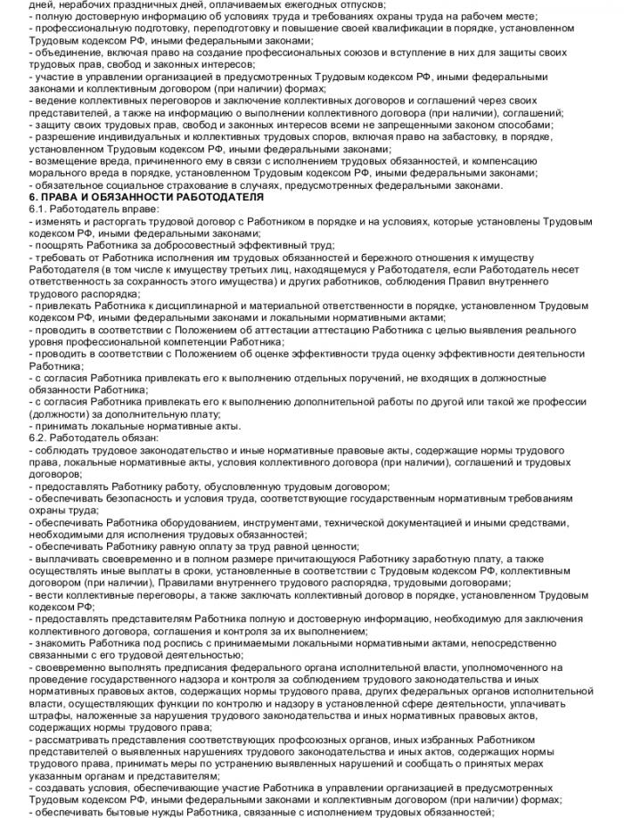 Образец трудового договора с ревизором_003