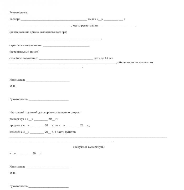 Образец трудового договора с руководителем проекта_005