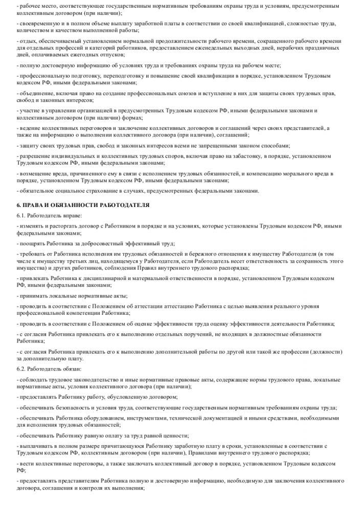Образец трудового договора с торговым представителем_003