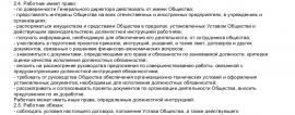 Образец трудового договора с финансовым директором_001