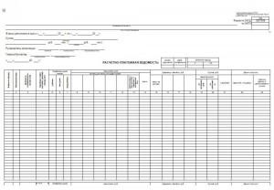 Документарные формы платежных инструментов (расчетные документы).