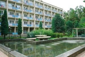 Строительство или аренда помещения под санаторий - одинаково дорого