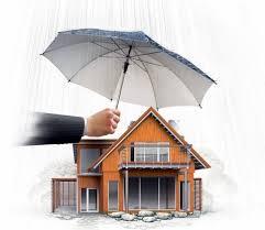 Справка об объекте недвижимого имущества, находящегося во владении юридического лица на правах собственности