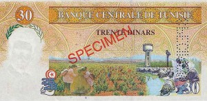 Тунисский динар30р