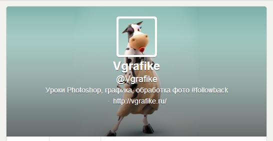 аватар твиттер