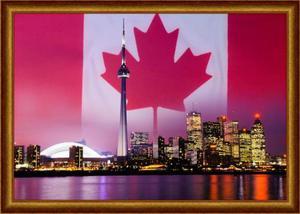 Открытие фирмы в канаде бизнес идея куплю