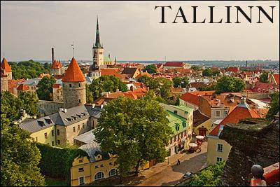 бизнес в таллине
