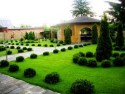 Озеленение и ландшафтный дизайн как бизнес