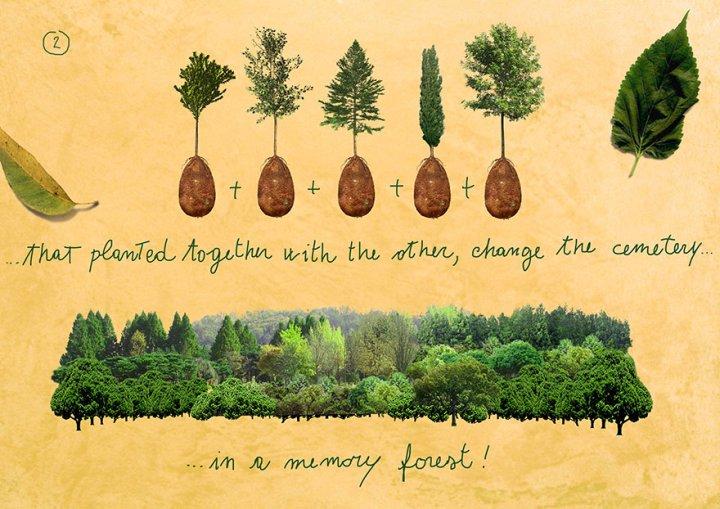 которые, будучи посаженные в землю вместе с другими такими же капсулами, преобразуют обычное кладбище в мемориальный лес.