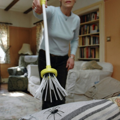ловля пауков