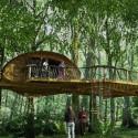 Необычный туризм: отдых в доме на дереве