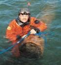 Подъем и реализация затонувших бревен