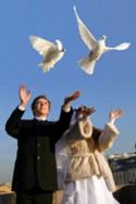 Белоснежные голуби на свадьбу