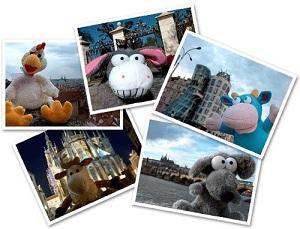 туристическое агентство для игрушек