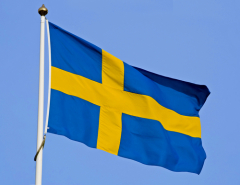 шведский бизнес