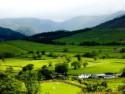 Свой бизнес в селе