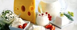 Бизнес на оптовой торговле молочной продукцией