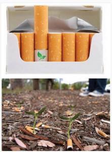 Сигареты с семенами цветов в фильтре