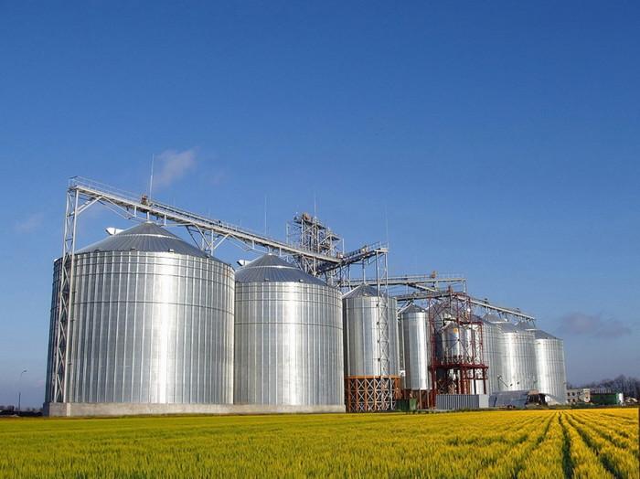 На Херсонщині розпочато досудове розслідування відносно колишнього керівника елеватора, який підозрюється у розтраті ввіреного йому зерна вартістю понад 18 млн. грн
