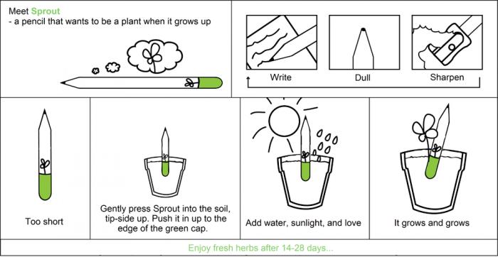 Подробная инструкция по применению карандаша с капсулой