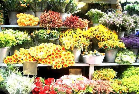 Скачать Игру Цветочный Магазин - фото 9