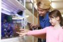 Как открыть зоомагазин разных животных