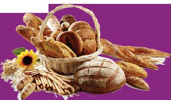 Открытие мини-пекарни позволяет делать широкий ассортимент продукции