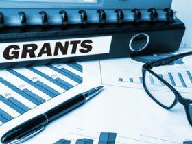 грант на развитие бизнеса