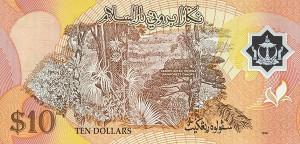 Брунейский доллар 10р