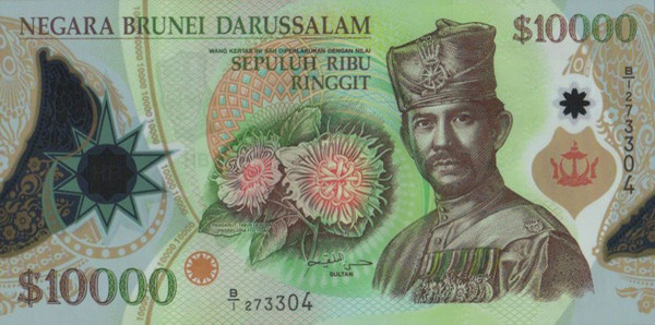 Валюта Брунея - Брунейский доллар. Деньги купюры