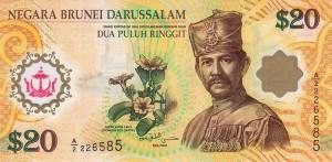 Брунейский доллар 20а