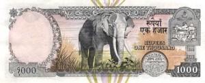 Непальская рупия 1000р