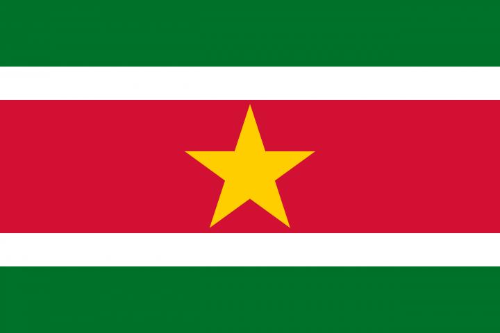 Посольство Суринама