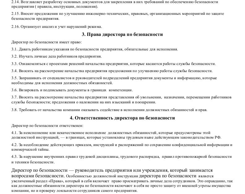 Должностная инструкция  директора по безопасности_002