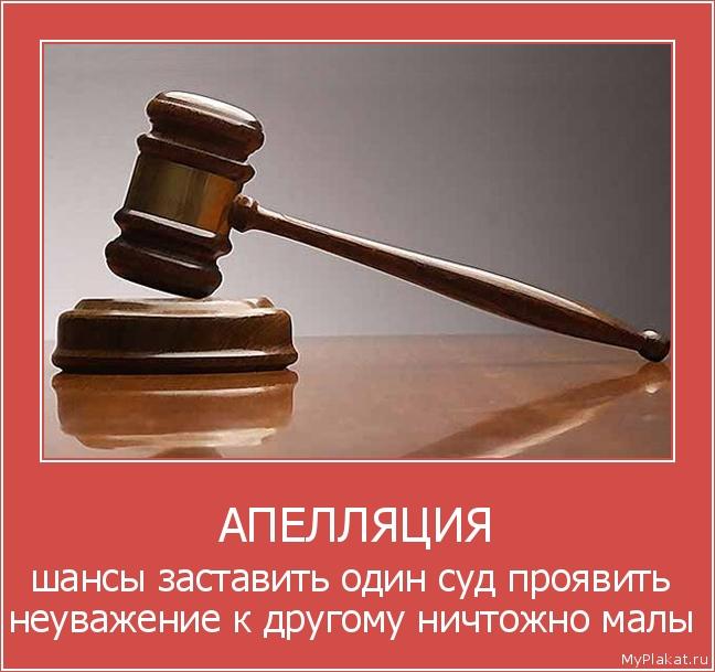 Апелляция 6