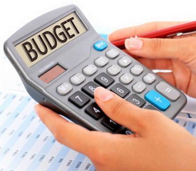 ассигнования бюджетные 4
