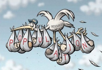 cartoon_stork