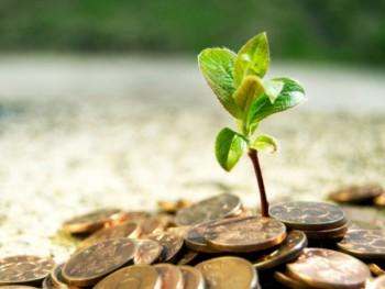 Бизнес идеи в сфере агробизнеса
