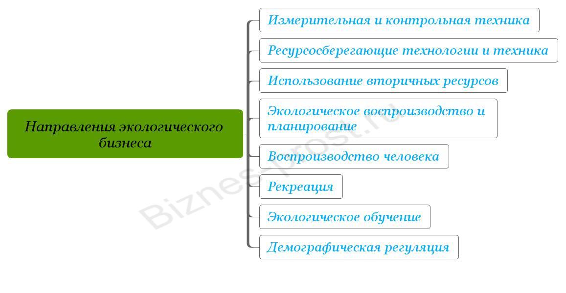 Направления экологического бизнеса