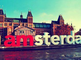 Открыть бизнес с нуля в Голландии
